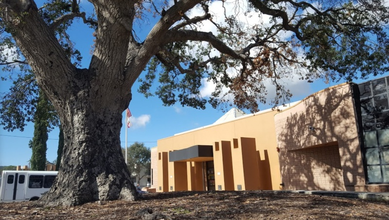 Sunland Tujunga Neighborhood Council Library Oak