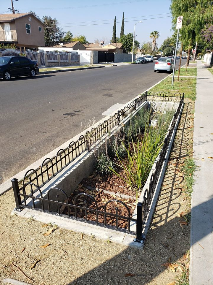 Councilwoman Monica Rodriguez - Bioswales at Van Nuys Blvd.