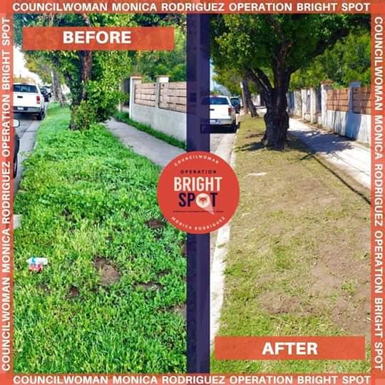 Councilwoman Monica Rodriguez  - Progress Made Through Operation Bright SPOT