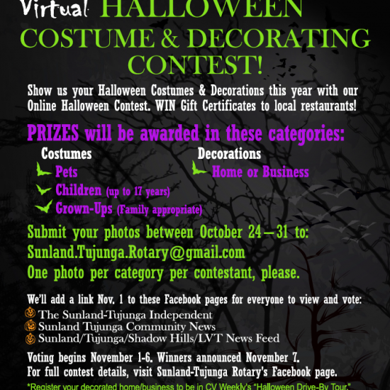 Virtual Halloween Costume & Decorating Contest