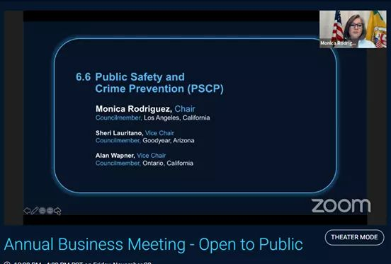 2020 Chair of the National League of Cities Public Safety and Crime Prevention Committee