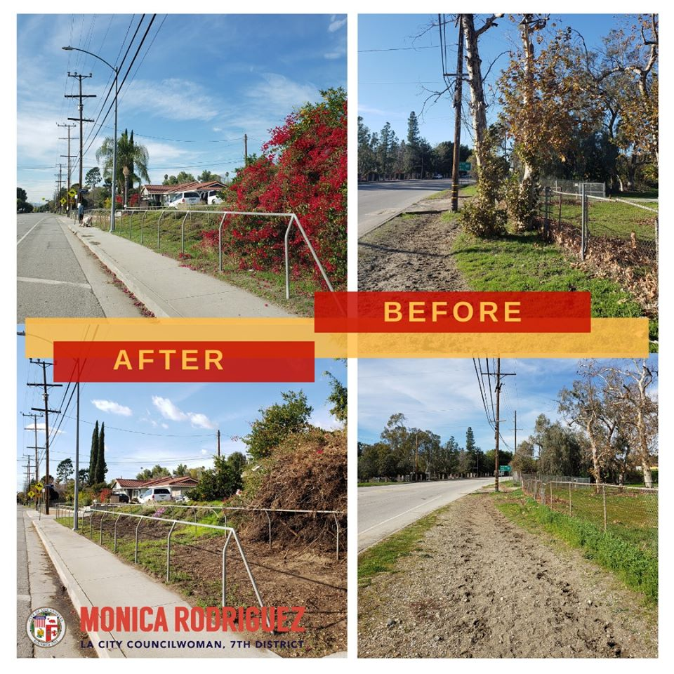 Councilwoman Monica Rodriguez - Dead Trees Removal Foothill Blvd