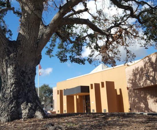 Sunland Tujunga Neighborhood Council Library Oak