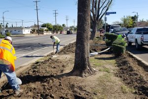 Phase 2 of the Glenoaks Green Street Project